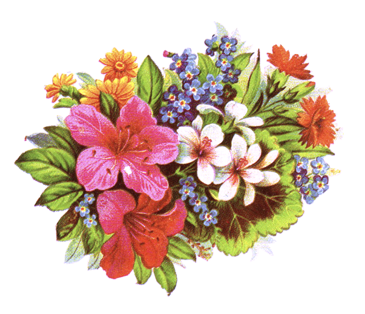 public domain vintage antique clipart of wildflower bouquet