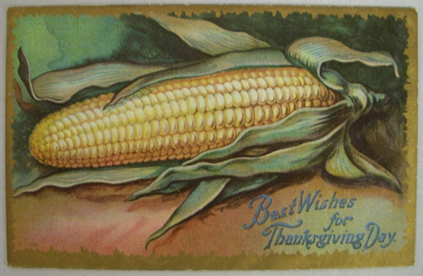 A free vintage thanksgiving corn illustration in the public domain