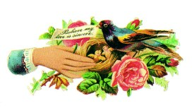 This is a copyright-free vintage illustration of a Valentines day birds nest with love note