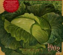 free vintage color illustration of cabbage seed catalog