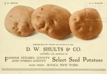 This is a free vintage illustration of an antique potato advertisement