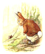 free vintage illustration of beatrix potter benjamin bunny 5