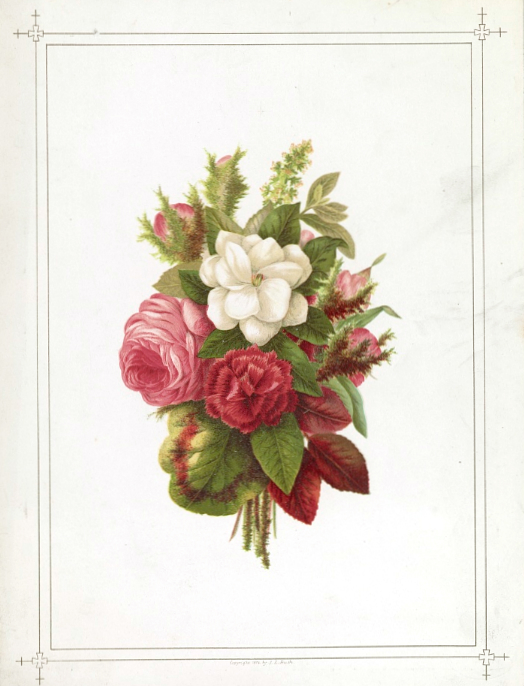 This is a soft and lovely free vintage image of a rose bouquet for Mothers Day