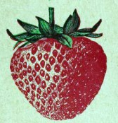 A free vintage illustration of a simple antique strawberry