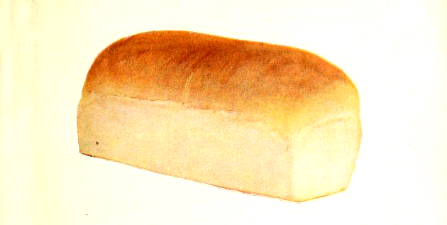 vintage bread illustration from retro cookbook