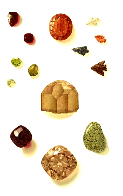 19th Century Illustration of Gems and Precious Stones