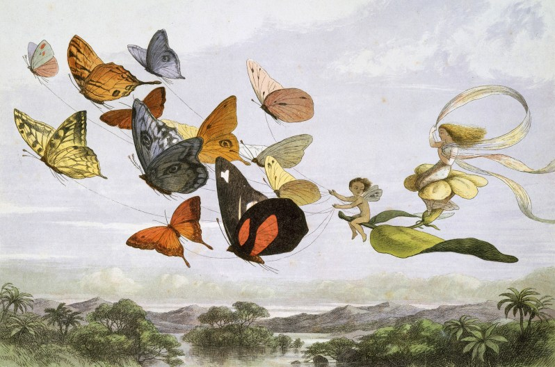 Two fairies flying through the sky with a butterfly leaf chariot.