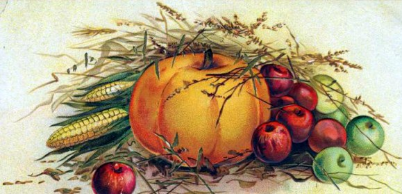 Vintage Pumpkin Illustration in the Public Domain