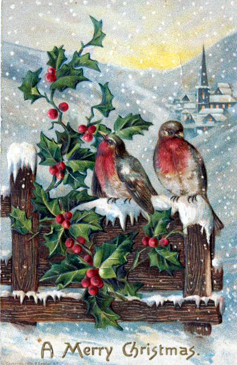 public domain vintage christmas cards with robin birds - Vintage Christmas Pictures