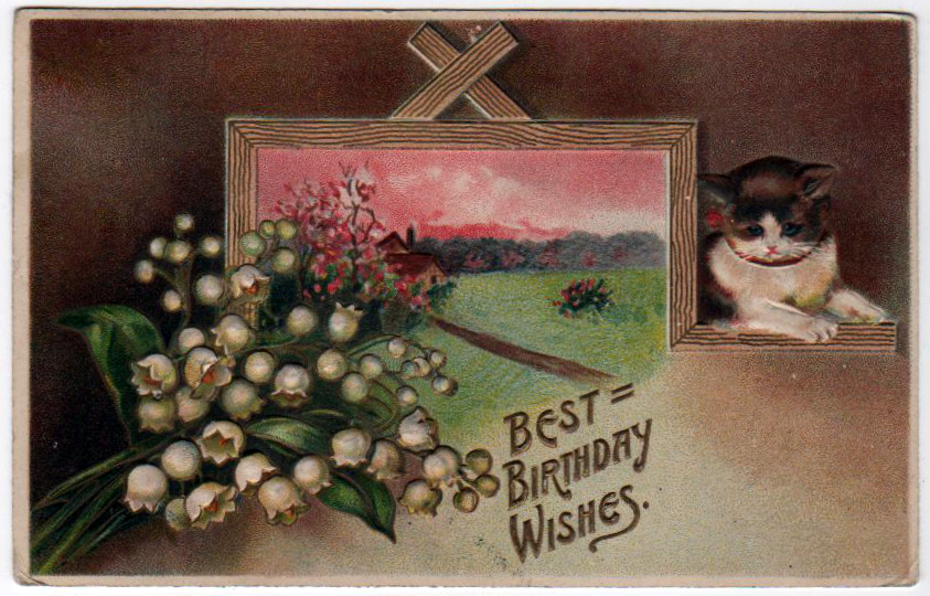 vintage birthday cards with kitten - free to use
