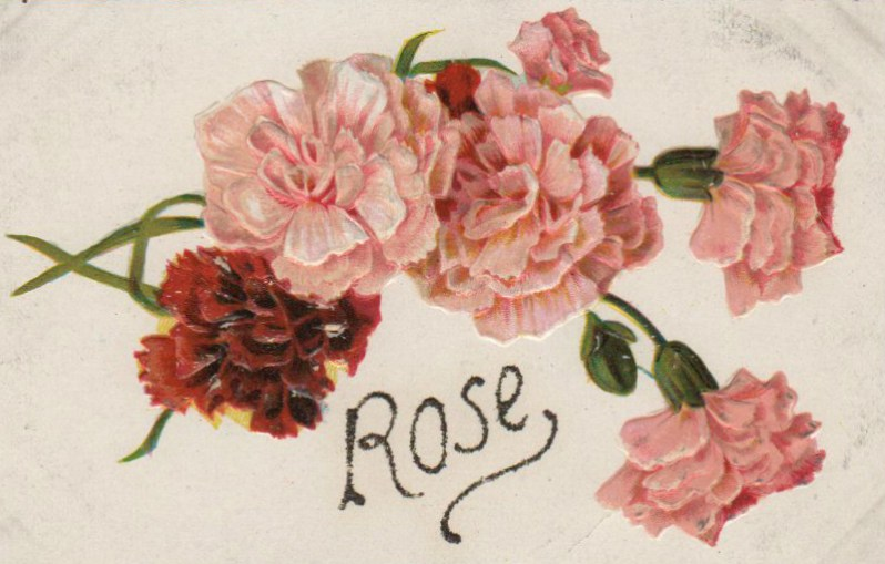 Free Valentine's Day pictures of roses - 19th 20th century