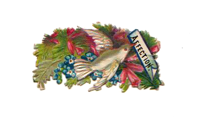 Free Valentine's Day pictures - 19th century vintage die cut of a Valentine's Day swan