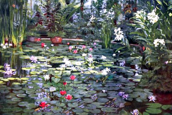 Free vintage landscape of Water lilies in London