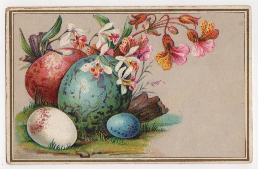 Public domain vintage illustration of eggs in nature