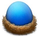 bluebird-icon