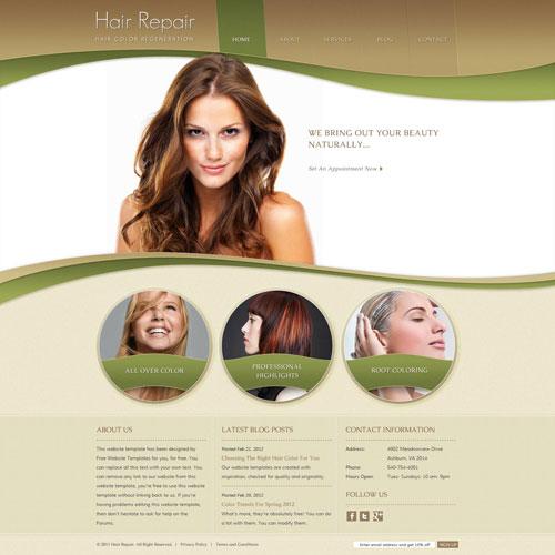 Image Result For Credit Repair Website Templates