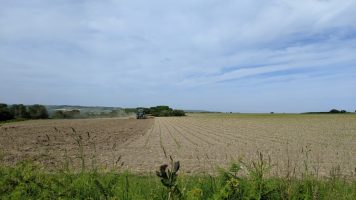 Chillerton and Gatcombe local walks