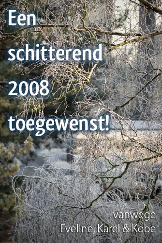 Een schitterend 2008 toegewenst!