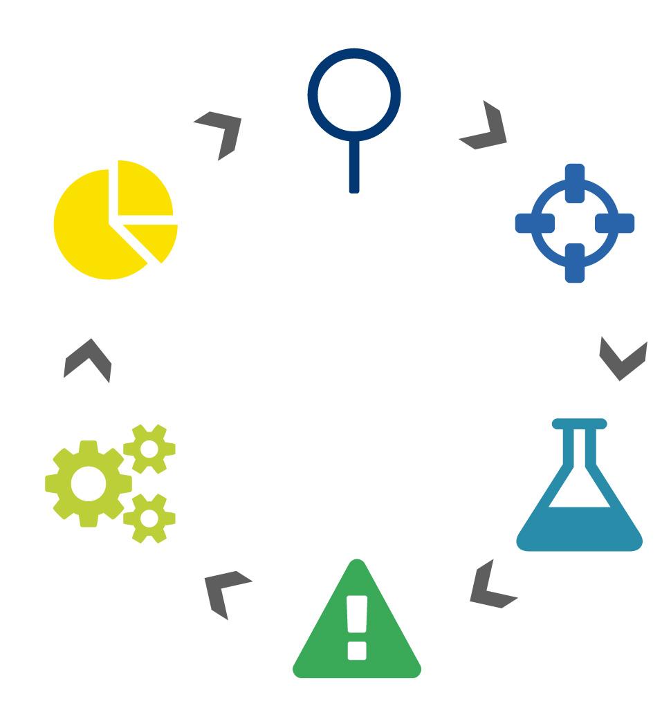 Modellzyklus der Coaching- und Beratungsmethoden