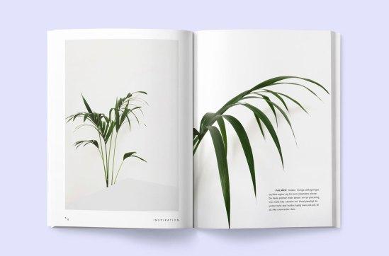 Image result for blad magazine