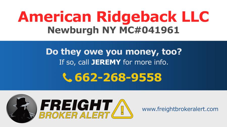 American Ridgeback LLC New York