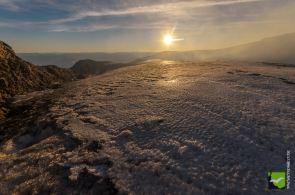 Gletschersonne