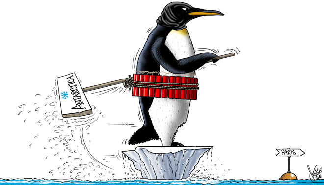 Klimaerwärmung: Wenn Pinguine zu Selbstmordattentäter werden