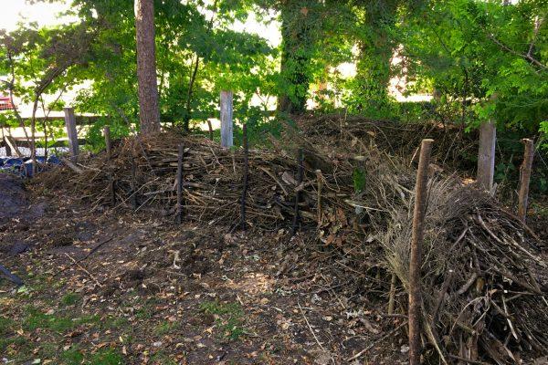 …und noch mehr Totholz