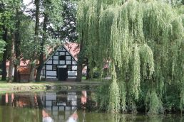 Dorfteich Vrees - © Martina Alfers, Emsland Touristik