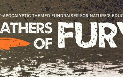 Birds of Prey Soirée – Feathers of Fury Fundraiser