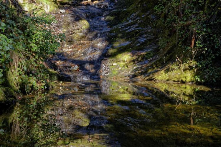 Rivière au clair/obscur
