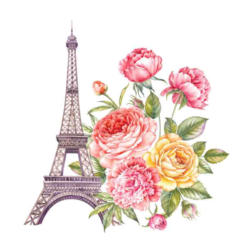 Learn French in Paris