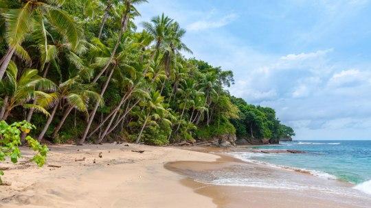 Comment aller à Bocas Del Toro depuis Panama City ?