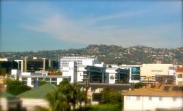 Starlette Cake Beverly Hills