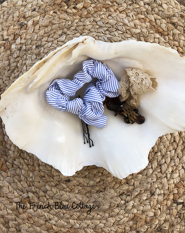 clam shell holding hair clips