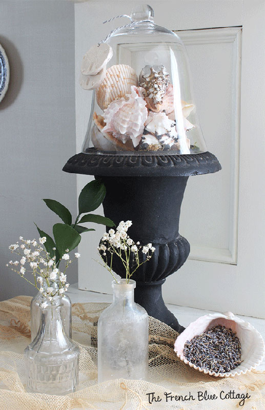 seashells in urn in a vignette