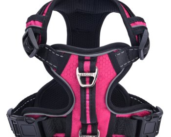 PUPTECK Best Front Range No-Pull Dog Harness