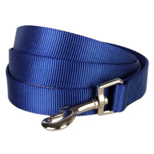 Bleuberry pet leash