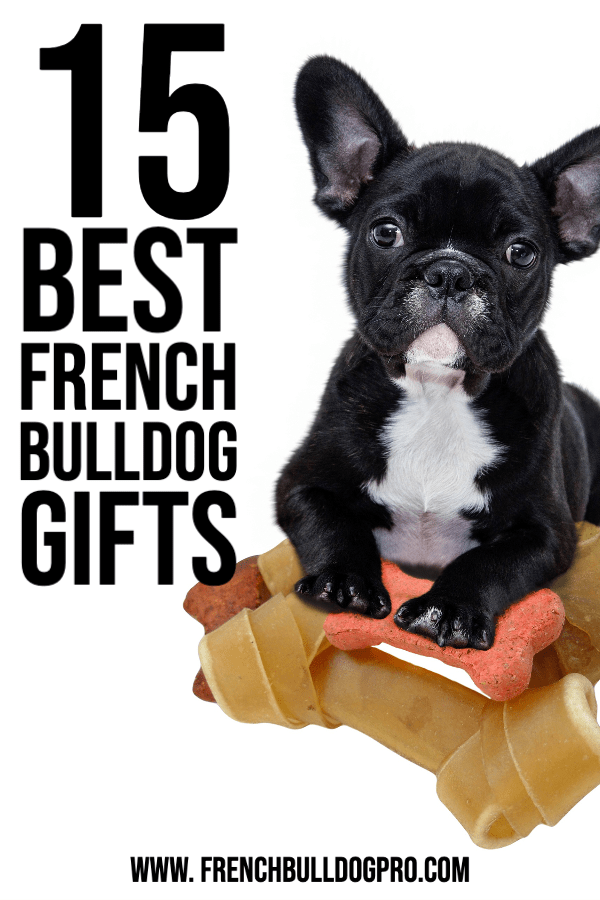 Best French Bulldog Gifts