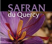 Quercy Safffron