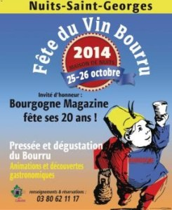 Nuits St Georges Wine Festival poster