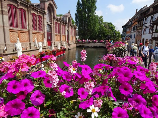 Colmar, Alsace (Grand Est)
