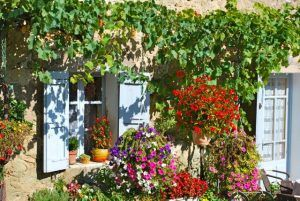 day1_img-provence-window2