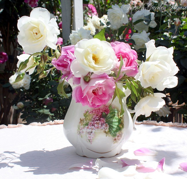 Take Care Of Cut Roses Ultimate Rose Care