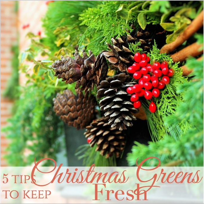 5 Tips To Keep Your Christmas Greens FRESH LONGER