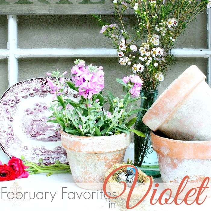 FEBRUARY FAVORITE THINGS   VIOLET