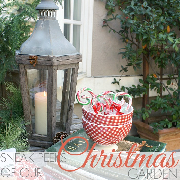 SNEAK PEEKS OF OUR CHRISTMAS GARDEN