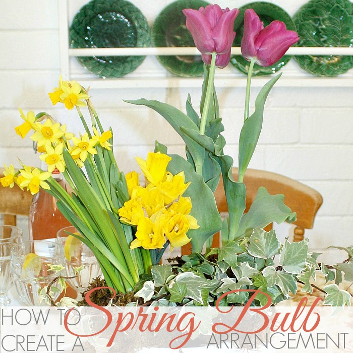 HOW TO CREATE A SPRING BULB ARRANGEMENT