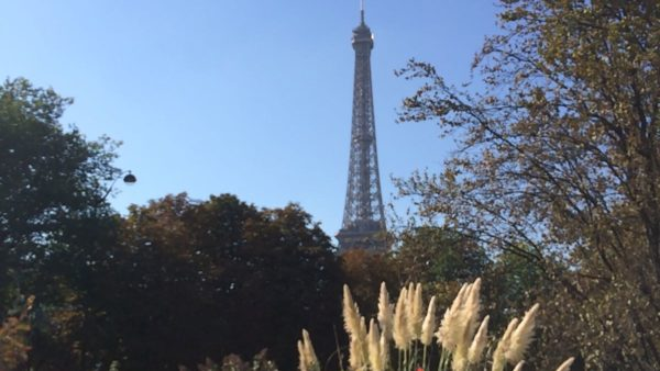 Place Of Adjectives – Today's French