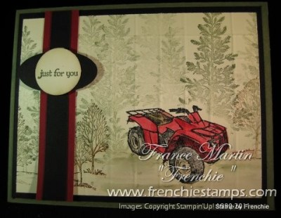 Stampin'Up! Need for Speed and Lovely as a Tree